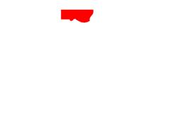 iconic Logo white
