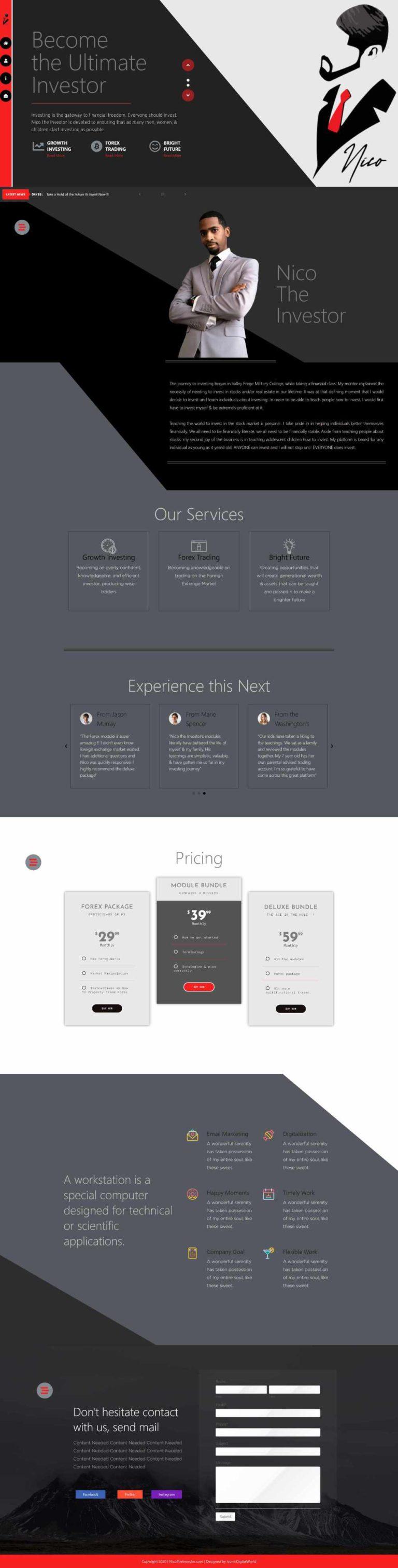nicotheinvestor-homepage